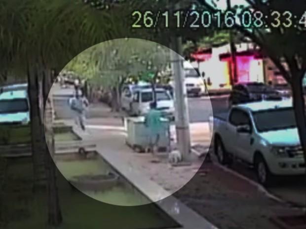 Criminoso rouba cadela e ameaça dono com arma em Goiânia, Goiás (Foto: Reprodução/TV Anhanguera)