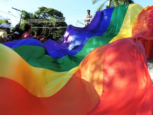 Parada do Orgulho LGBT reuniu cerca de 1,2 mil pessoas no Parque do Povo (Foto: Heloise Hamada/G1)