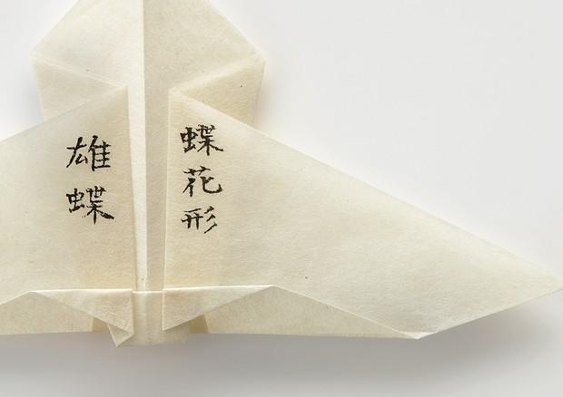 Folding, do Instituto de Design Origata (Foto: Amana Group, Arquivo Pessoal e Divulgação)