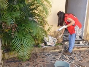 Agentes visitam casa para combater criadouros do mosquito da dengue (Foto: Horácio Busolin Júnior/Secom Araras)