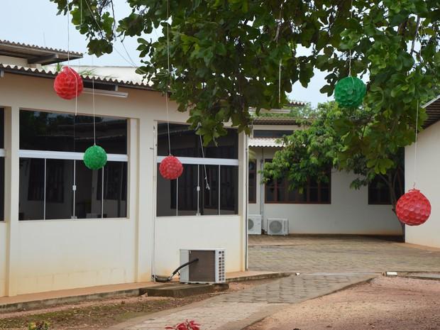 Garrafas pets decoram árvore do campus (Foto: Divulgação/IFTO)