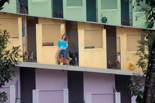 ADOÇÃO Joelma Dvoranovski, no Clube dos Vira-Latas, em Ribeirão Pires, São Paulo. Ela  procura um lar para mais de 1.000 cães abandonados tratados na ONG (Foto: Rogério Cassimiro/ÉPOCA)