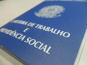 carteira de trabalho  (Foto: Janine Brasil/G1)