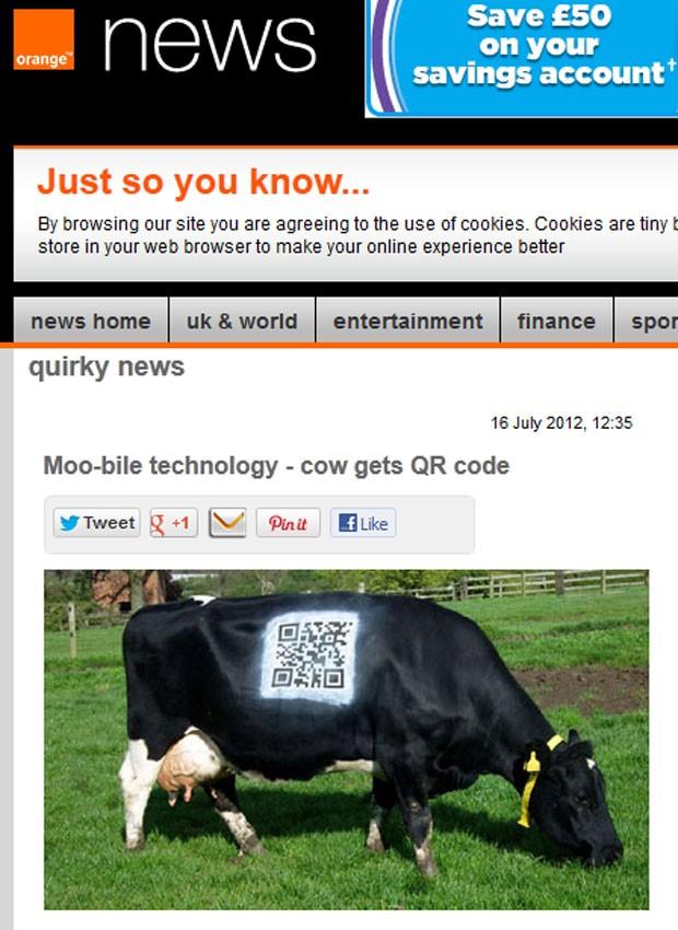 Site 'Orange News' mostra vaca que teve código QR pintado ao corpo (Foto: Reprodução)