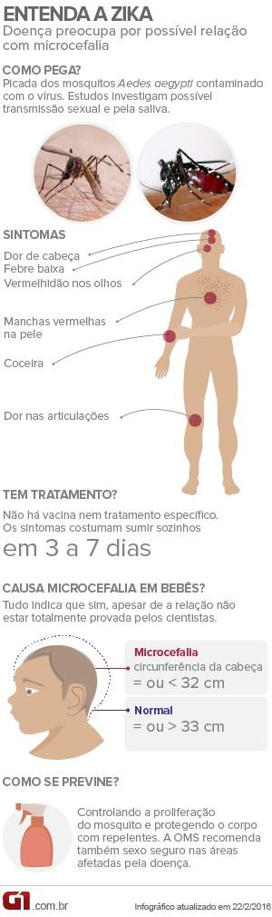 Entenda a Zika- corrigido (Foto: Arte/G1)