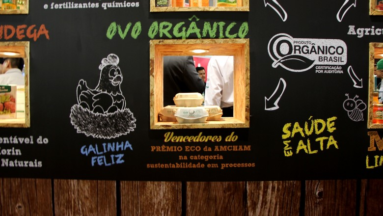ovos_orgânicos_korin (Foto: Susana Berbert / ED Globo)
