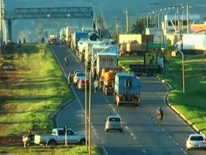 Caminhoneiros fazem novo bloqueio na BR-153 em Aparecida de Goiânia (Foto: Reprodução/TV Globo)