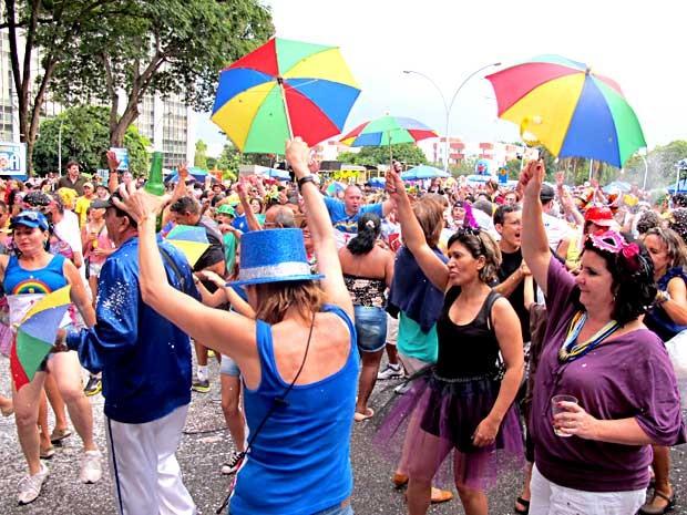 Público dança frevo durante apresentação do bloco Galinho de Brasilia (Foto: Lucas Nanini/G1)