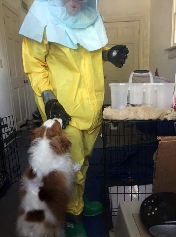 Cão Bentley é tratado por pessoa em traje de proteção contra o ebola (Foto: AP Photo/City of Dallas and Dallas Animal Services)