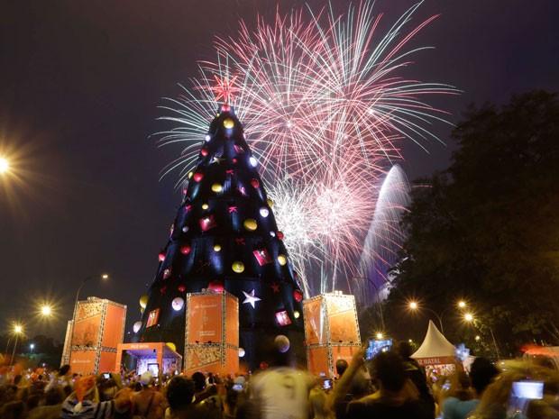 Fogos de artifício foram usados na festa de inauguração da árvore de Natal do Ibirapuera neste domingo (8) (Foto: Nelson Antoine/Foto Arena/Estadão Conteúdo)