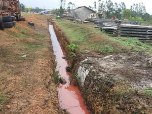 Combustíveis foram derramados no solo na AP-010 (Foto: Abinoan Santiago/G1)