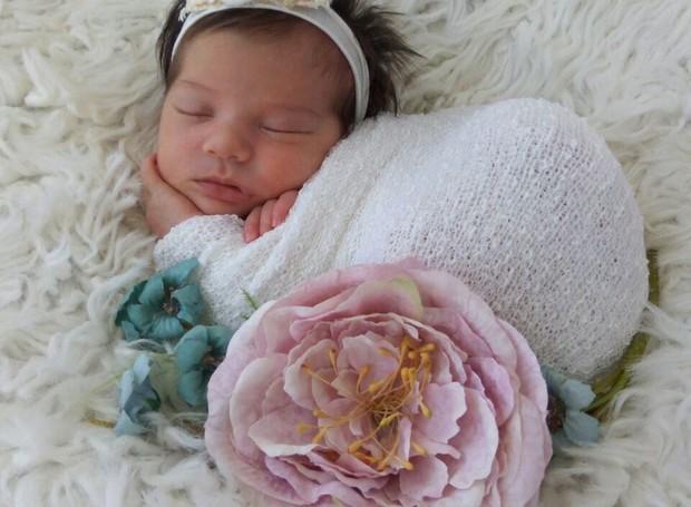 Ensaio de newborn da pequena Alice (Foto: RBS TV/Divulgação)