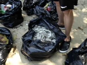 Mutirão recolheu lixo da Praia da Bica (Foto: Reprodução/TV Rio Sul)