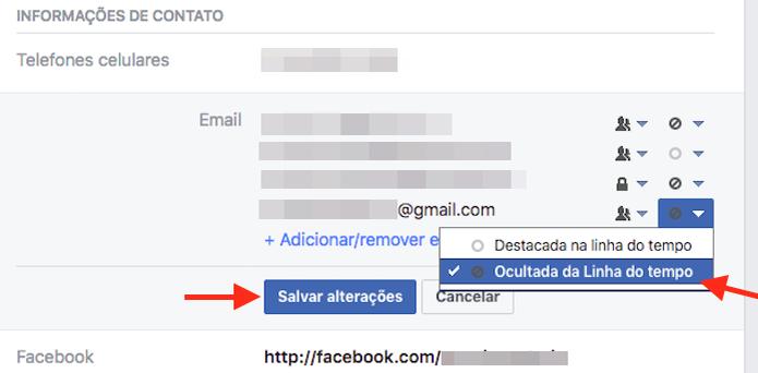 Tornando visível no perfil o e-mail adicionado como principal no Facebook (Foto: Reprodução/Marvin Costa) (Foto: Tornando visível no perfil o e-mail adicionado como principal no Facebook (Foto: Reprodução/Marvin Costa))