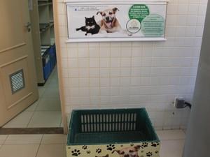 Caixa para recolher doações para os animais da Proteger (Foto: Emerson Rocha/GloboEsporte.com)