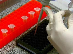 Composto será testado em animais durante a próxima fase da pesquisa (Foto: Marlon Tavoni/EPTV)