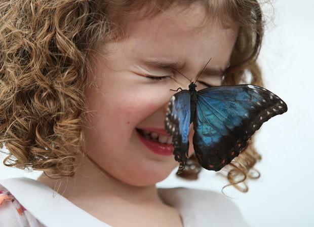 Menina 'faz careta' após borboleta pousar em seu nariz em exposição do Museu de História Natural britânico (Foto: Alastair Grant/AP)