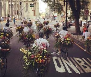 azuma-makoto-acao-na-japan-house-sao-paulo-message-in-a-bycicle.JPG (Foto: Reprodução Instagram)