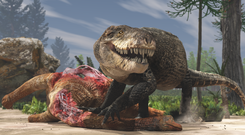 Razanandrongobe sakalavae, ou simplesmente Razana, crocodilo gigante (Foto: Fabio Manucci)