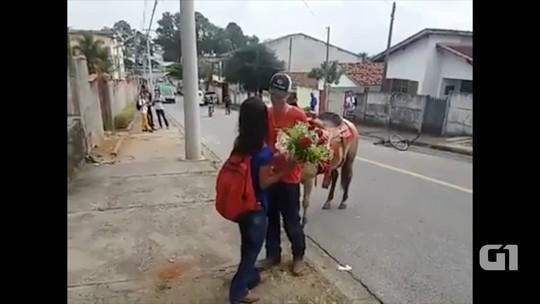 Para reatar namoro, jovem surpreende ex com flores e cavalo branco; assista