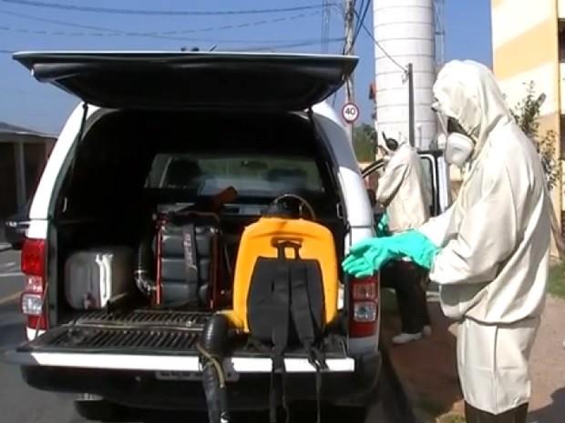 Ações são tomadas para evitar a proliferação dos mosquitos da dengue (Foto: Reprodução TV TEM)