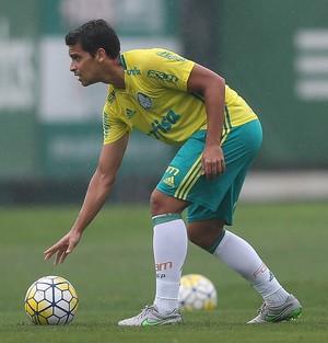 Jean Palmeiras (Foto: César Greco / Ag. Palmeiras / Divulgação)