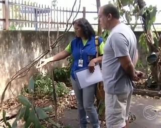 Agentes fixos serão treinados (Foto: Bom Dia Rio)