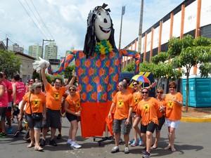 Desfile da Banda da Sapucaia abriu a programação do carnaval de Piracicaba em 2014; evento reuniu 30 mil foliões, segundo a Polícia Militar (Foto: Thomaz Fernandes/G1)