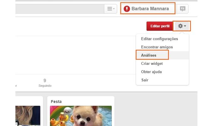 Acesse as análises pelo menu do Pinterest (Foto: Reprodução/Barbara Mannara)