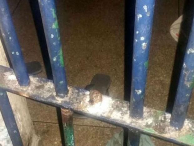 Todos os 34 presos participaram da tentativa frustada  (Foto: Divulgação: Polícia Civil)
