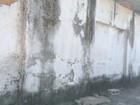 Especialistas explicam como evitar e tratar mofo nas paredes e móveis