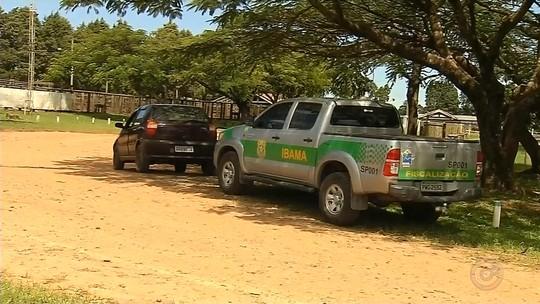 Fiscais do Ibama notificam em Torrinha produtores de gado investigados em operação
