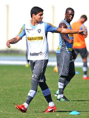 renato treino Botafogo (Foto: Alexandre Cassiano / Agência o Globo)