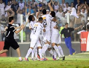 Comemoração Jogadores do Santos (Foto: Marcos Ribolli / Globoesporte.com)