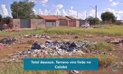 Moradores de bairro de Campo Grande reclamam de sujeira