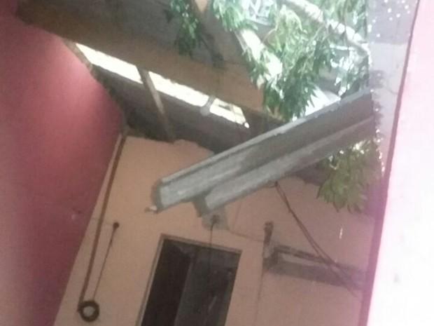 Árvore caiu em cima de telha de residência em Tapiraí (Foto: Lucilene Cristina/Arquivo pessoal)