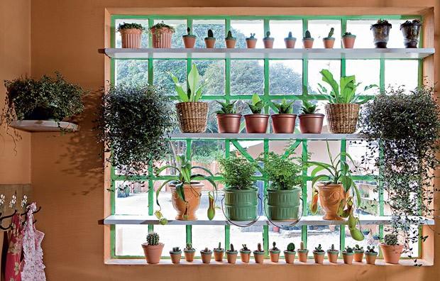 A janela ganhou vista verdejante com mais de 40 vasos em prateleiras. As plantas são de baixa manutenção. Anote os nomes: véu-de-noiva, asplênio, espadinhas, avenca e minicactos. Projeto da paisagista Gabriela Pileggi Monteiro, da Jardineiro Fiel (Foto: Edu Castello/Editora Globo)