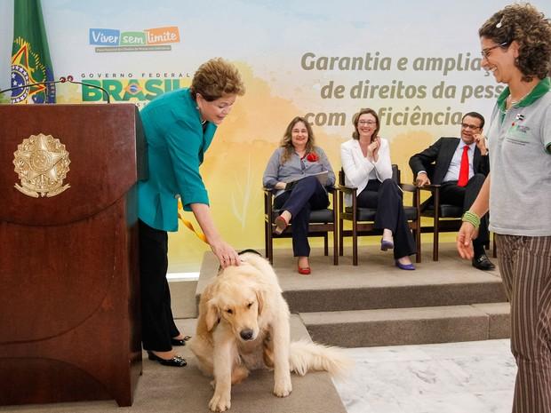 Dilma Rousseff acaricia cachorro durante cerimônia de assinatura do Decreto de Regulamentação da Aposentadoria Especial para a Pessoa com Deficiência. (Foto: Roberto Stuckert Filho/PR)