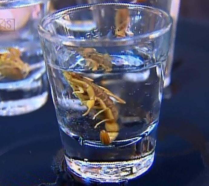 Drink exótico com escorpião (Foto: TV Globo)