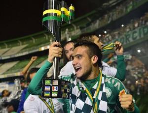 Maikon Leite, Palmeiras, Campeão Copa do Brasil (Foto: Marcos Ribolli / Globoesporte.com)