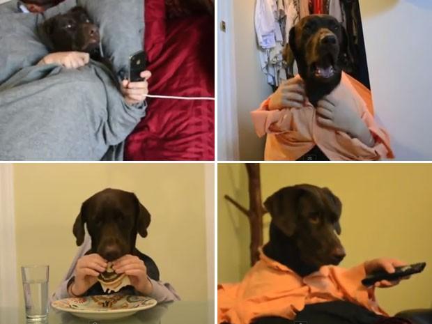 Cão é filmado levantando, fazendo um lanche e até assistindo televisão (Foto: Reprodução)
