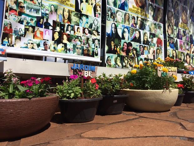 Jardim em homenagem a Bernardo em Três Passos, RS (Foto: Caetanno Freitas/G1)