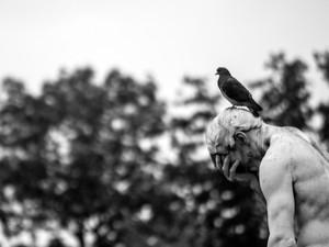 Exposição em Pouso Alegre, MG, mostra um novo olhar sobre estátuas (Foto: Exposição Religare/ João Paulo Alvarenga)