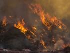 Nos EUA, 17 mil bombeiros combatem incêndios florestais em 10 estados