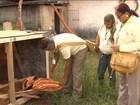Quintal sem focos da dengue vale prêmio em dinheiro no interior de SP