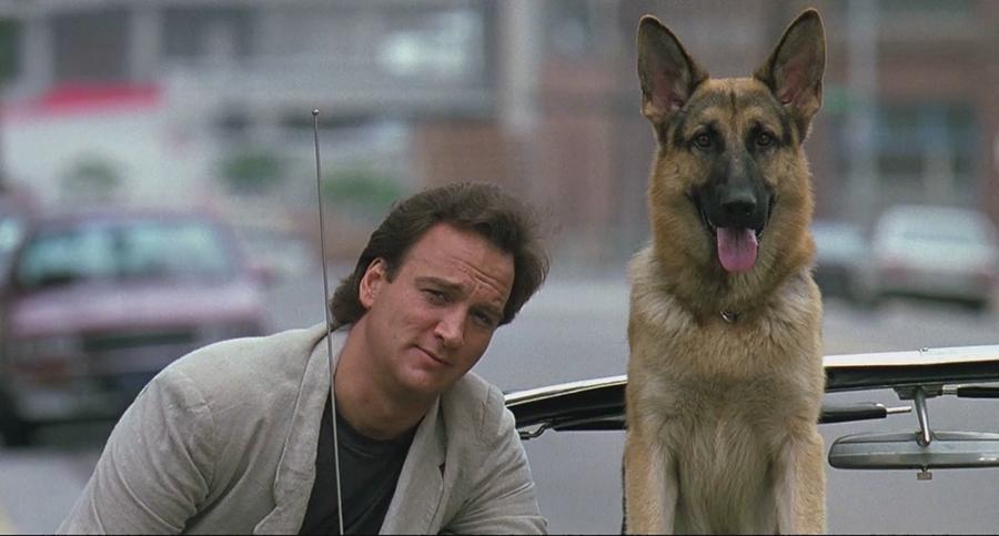Jerry Lee - K-9 - Um Policial Bom Pra Cachorro (1989) (Foto: Divulgação)