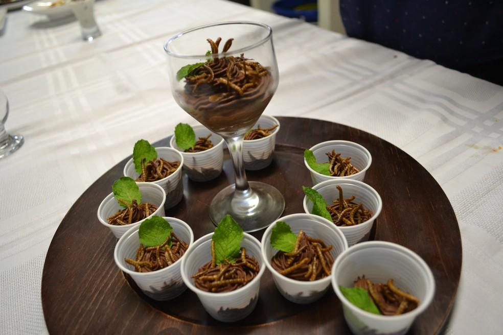Creme de chocolate com larvas (Foto: André Teixeira/G1)