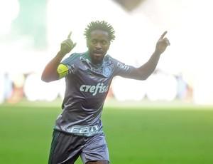 Zé Roberto Palmeiras x Joiville (Foto: Marcos Ribolli)