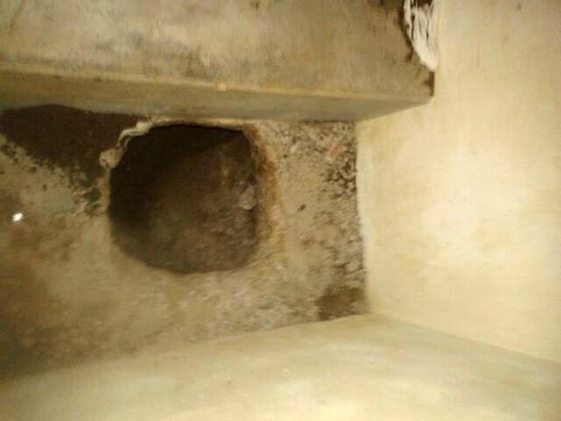 Túnel tem cerca de cinco metros, segundo a direção (Foto: Divulgação/Coape)