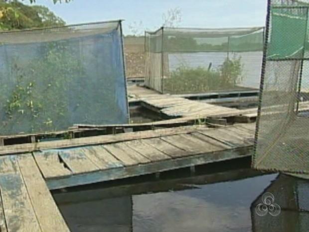 Tanque rede está abandonado e cheio de mato (Foto: TV Rondônia/Reprodução)